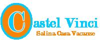 logo Castel Vinci